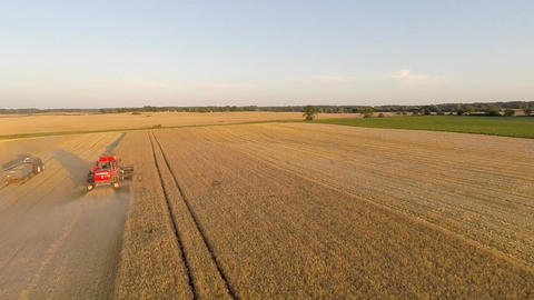 Aerial View Of A Combine Harvester Harvesting Barley stock footage
