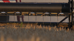 Detail of the mower of a combine harvester harvesting barley, 4k, 25 fps Footage