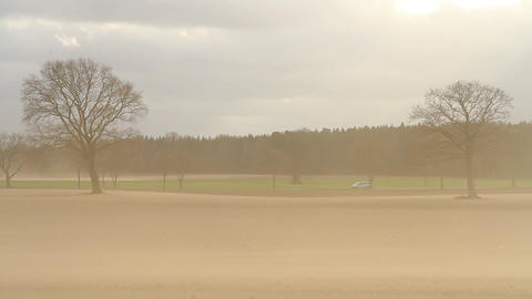 Heavy dust storm causes soil erosion on dry fields in Germany Footage
