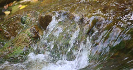Sheshory waterfalls, Ukraine. Water flowing over rocks. Close-up Footage