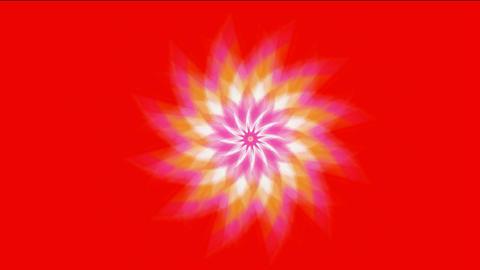 swirl fiber optic & windmill,Buddhism Mandala lotus... Stock Video Footage