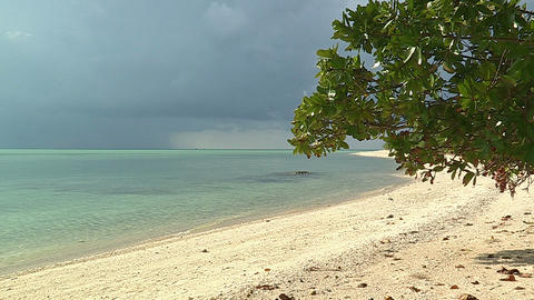Summer Beach and Sea in Taketomi Island,Okinawa,Japan ライブ動画