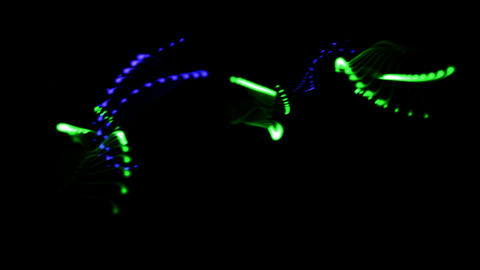 Jump music rhythm,color particles shaped shine curve... Stock Video Footage