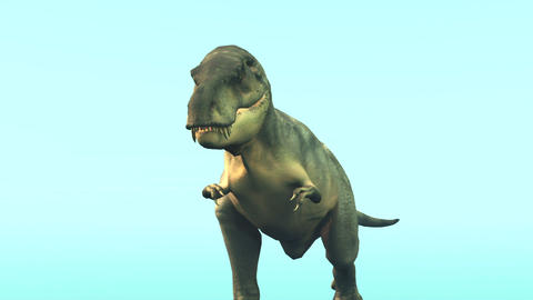 恐竜 テラノザウルス Stock Video Footage
