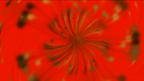 Dandelion seeds being blown,rotation petals &... Stock Video Footage