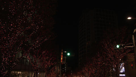 Holiday Illumination and Tokyo Tower over traffic Footage