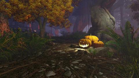 Carved Halloween pumpkins under old tree Footage