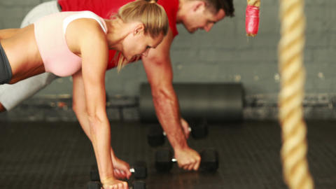 Fitness man and woman using dumbells in training Footage
