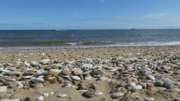 Pebbles on beach  Footage