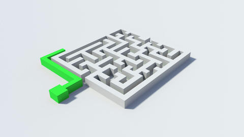 Green line going around a maze to the other side Animation