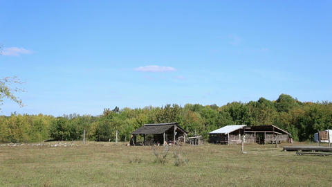 The village with the dwellings of the Stone and Bronze Age Live Action