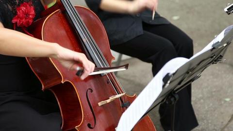 The girl musician playing the cello GIF