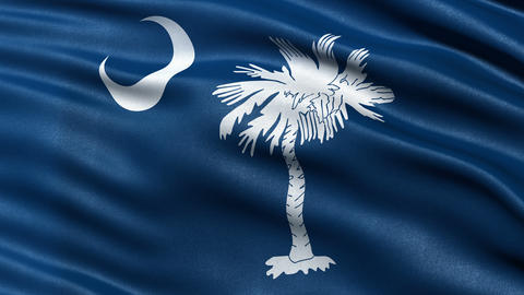 4K South Carolina state flag seamless loop Ultra-HD Animation