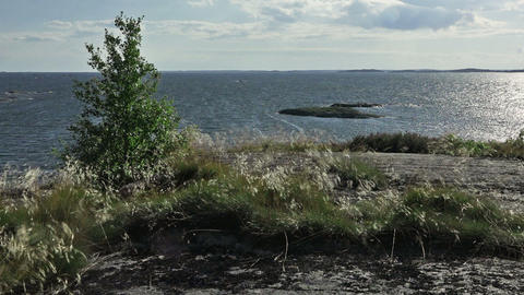 Windy Day In The Archipelago stock footage