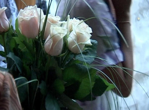 Roses In Hand stock footage