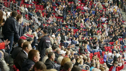 Wild Fans at Sporting Event Footage