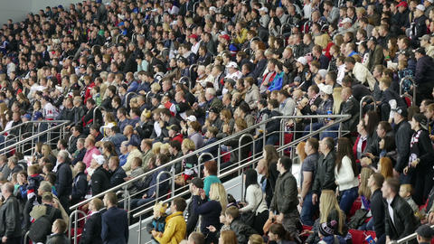 Fans at sporting events closely watching the game of hockey Footage