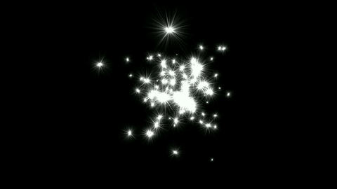 shine stars & dandelions flying in sky Stock Video Footage