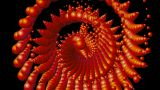DNA chain,spiral bubble and waterdrop shaped seashell,cambrian profiled bio and microbe Animation