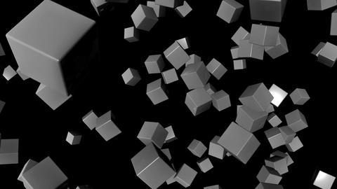 white random cubes Animation
