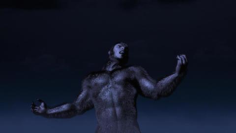 Werewolf Transformation 2 Animation