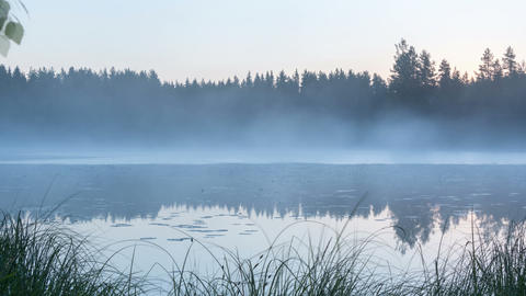 Panning timelapse shot of foggy lake in morning Footage