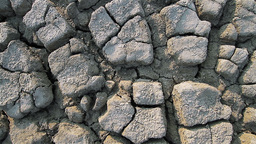 Dolly Shot Of Cracked Dry Earth stock footage