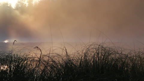 Tilt Shot Of Fog Moving At A Lake During Sunrise stock footage