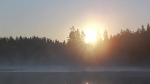 Sun rising behind trees at a foggy lake in morning Footage