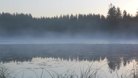 Foggy lake in early morning Footage