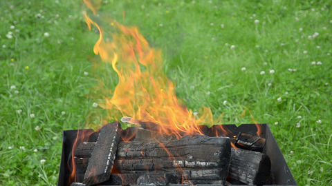 Close Up View Of The Fire Tongues And Firewoods In The Garden Barbecue stock footage