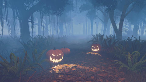 Halloween pumpkins in a scary night forest Footage