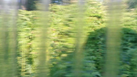 View Through The Glass stock footage