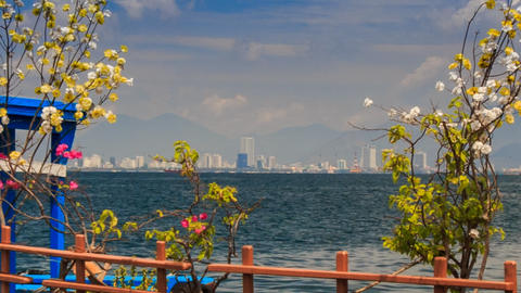 View Of Distant Resort City Across Sea Through Blossom Branches stock footage