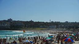 australian beach Footage