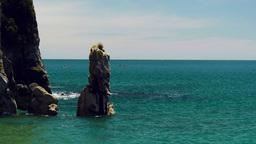 kayaking abel tasman national park Footage