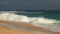 surfers at sandy beach hawaii Footage