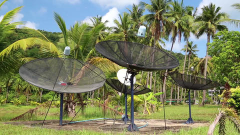 Satellite dishes in wood amongst palm trees on the Koh-Chang island in Thailand Footage