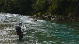 fly fishing caples river new zealand Footage