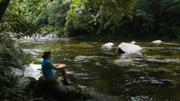 Mossman Gorge And Tourist stock footage