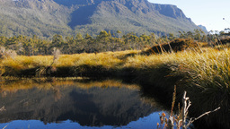 Mt Massif Overland Track Pan stock footage