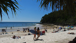 surfers at noosa heads Footage