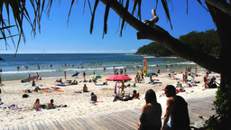 tourists at noosa heads Footage