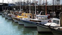 san francisco fishing boats-2 Footage