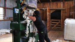 loading wool bale press Footage