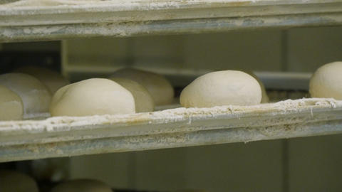 german bakery roll bun on conveyor belt elevator close 4k 11675 Footage