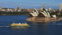 sydney opera house from bridge Footage