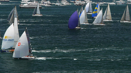 yachts on sydney harbour Footage