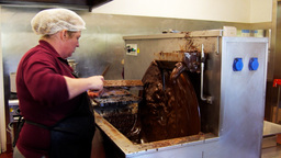Chocolate Factory Worker stock footage