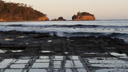 tessellated pavement tasmania Footage